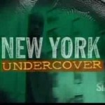 (90's Visions) New York Undercover: Cat Ep. Staring Ice-T