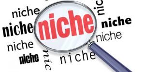 create-niche