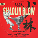 THEM_Shaolin_Blow_art_by_FWMJ