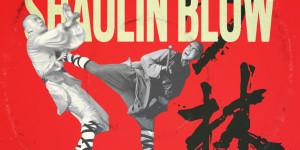 THEM_Shaolin_Blow_art_by_FWMJ