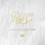 Pimp C ft. Juicy J & Nas – Friends